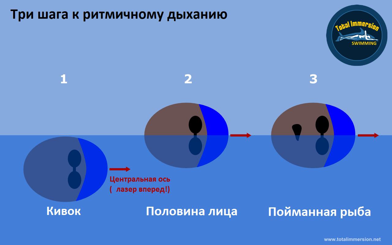 Правильное дыхание в плавании